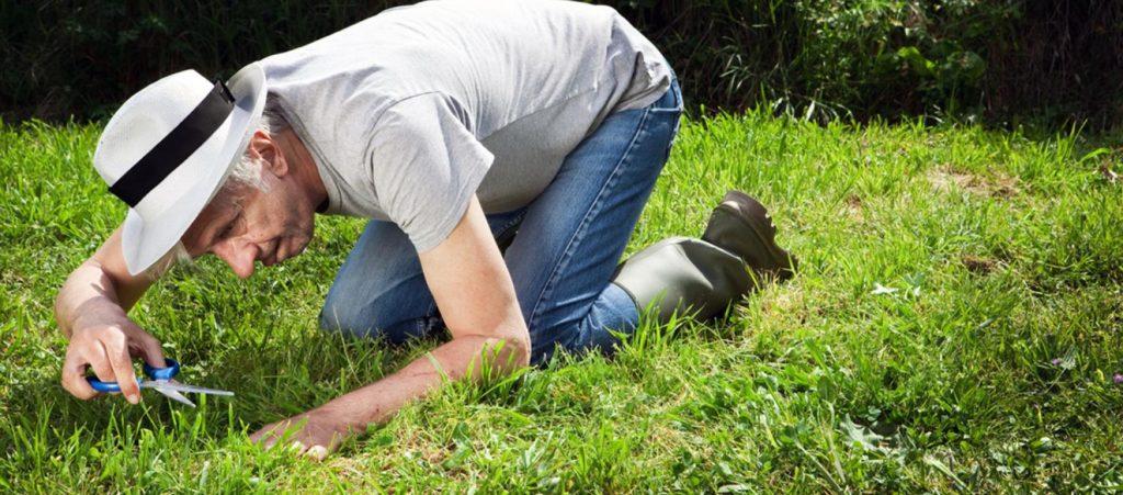 Paul Robbins cutting grass with scissors